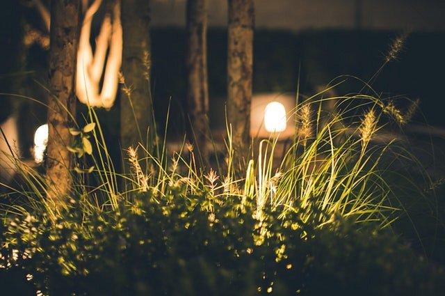 Oświetlenie Led Ogrodu